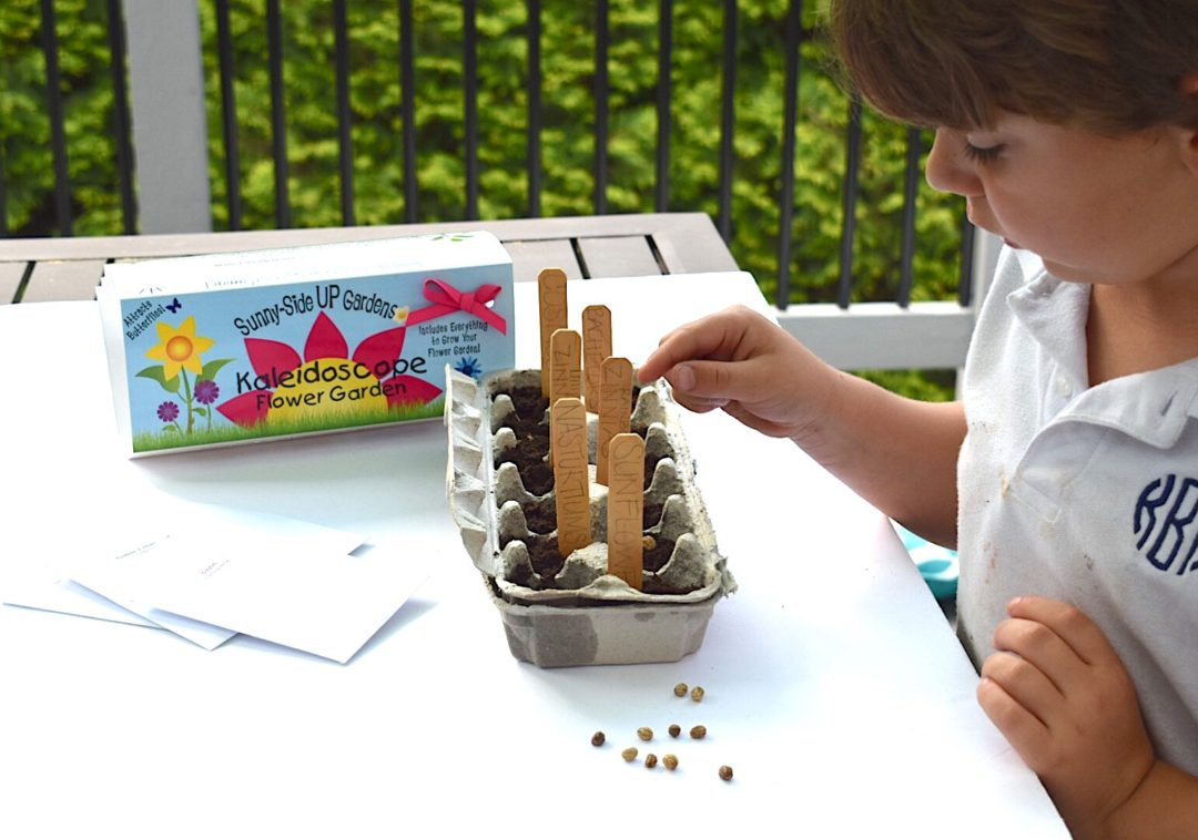 Knox planting his seeds for his Sunny-Side UP egg carton gardening kits by Backyard Safari Company